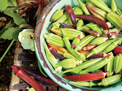 How to Cook Okra Like a Pro  | SouthernLiving
