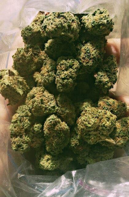 text at 707 335 4526 place an order at www.marijuanaplug@gmail.com