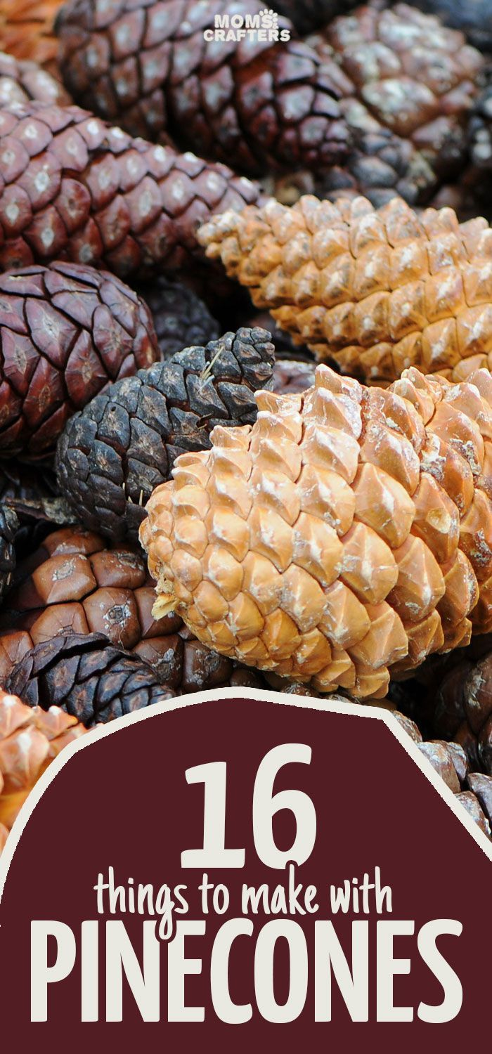 Autumn brings with it my favorite free craft supply: pine cones! Click for 16 perfect pinecone crafts for kids, adults and everyone in between! You'll find some great winter and holiday decor here, ideas for autumn crafting, adn easy DIY tutorials to get you going!