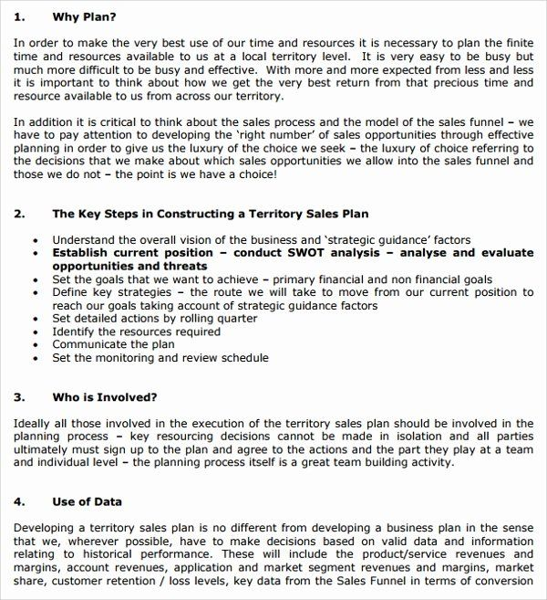 40 Territory Sales Plan Template In 2020 Business Plan Template