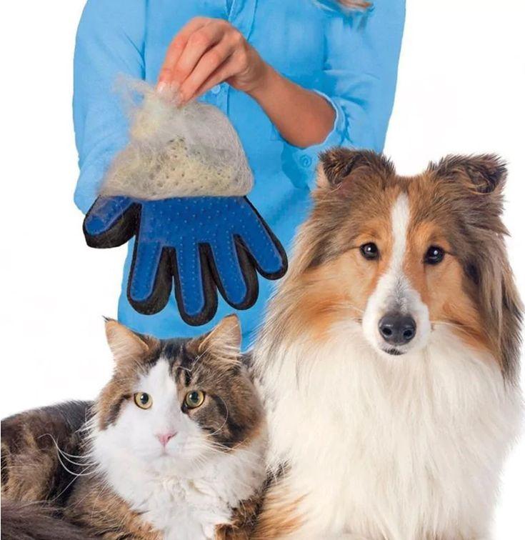 Gant magique de toilettage, 4 couleurs, main droite & gauche  💖 Chimey adore et se porte garant que votre animal de compagnie en sera fan !  Pour poils longs et courts, frisés ou pas, chiens ou chats, doux et pratique à la fois, ce gant est d'une efficacité redoutable.  Fini de la corvée du toilettage avec ce gant magique et révolutionnaire !  En usage humide ou sec  Après toilettage, les poils se retirent facilement du gant pour être jetés.  Facile à nettoyer : retirer la boule de poils et…