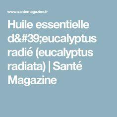 Huile essentielle d'eucalyptus radié (eucalyptus radiata) | Santé Magazine