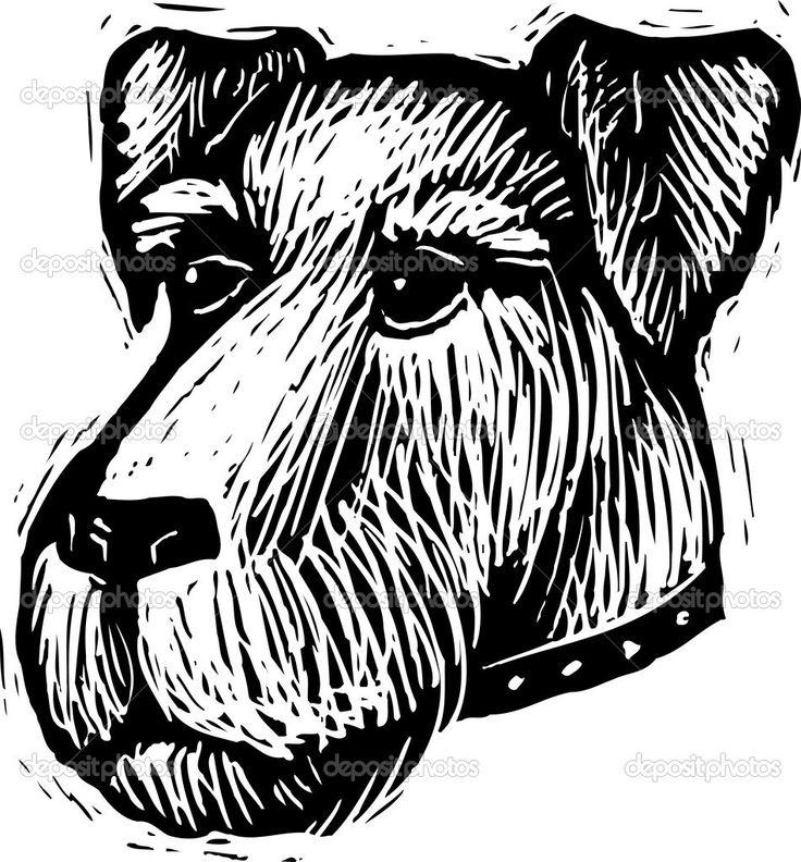 Ilustración de xilografía de cara de perro schnauzer — Vector de ...