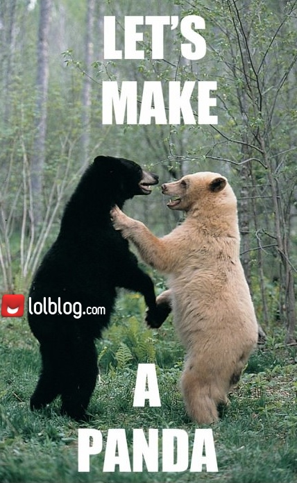 The Making Of Pandas