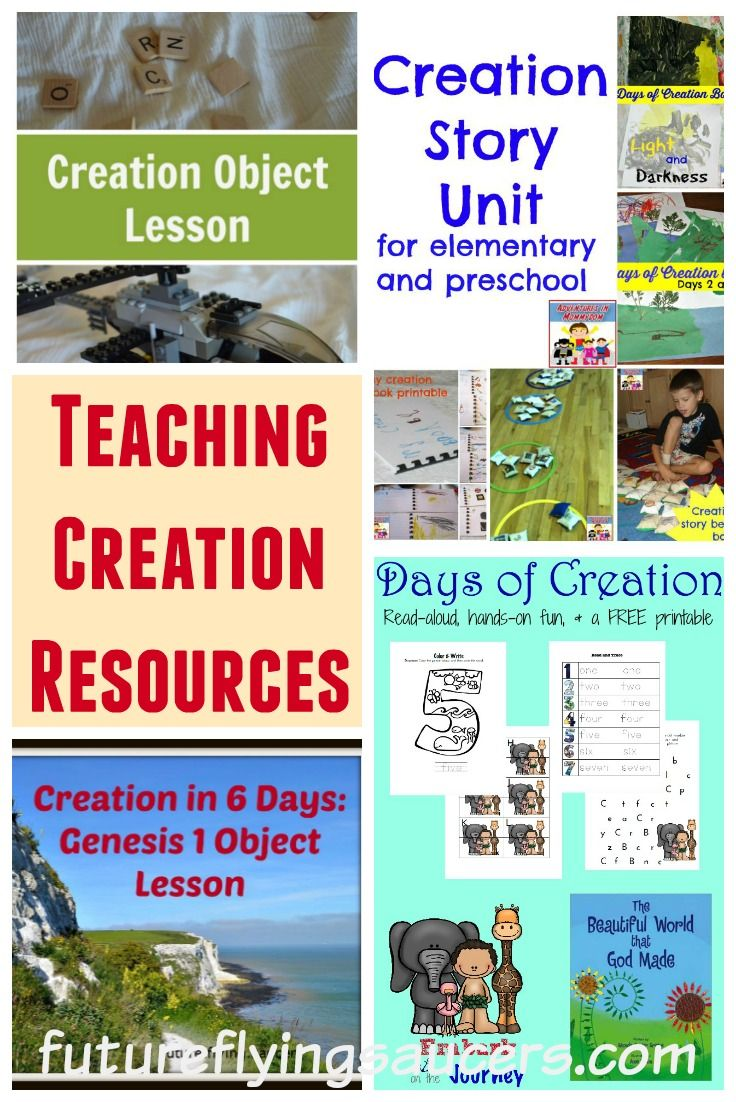 Creation bible study questions