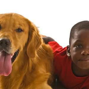A list of the best dogs for kids from Fetch! Pet Care.