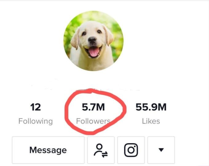 I Will Promote Your Music On My 6 5m Followers Tiktok Your Music Music Promotion