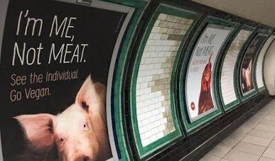 Bio Bloggando: Tutto quel che avreste voluto sapere da un vegano ...
