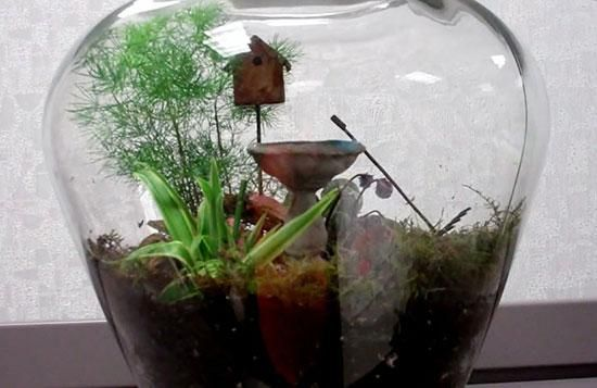 Garden under glass when you make a terrarium for a tabletop. Home Depot associate Maureen tells you how to grow a garden in a tiny space.