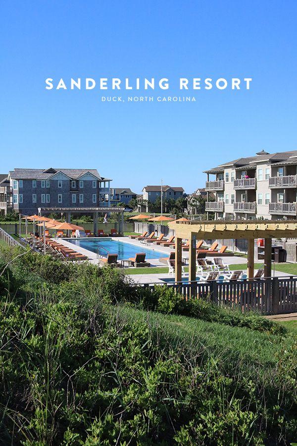 149 Best Images About Sanderling In The Media On Pinterest