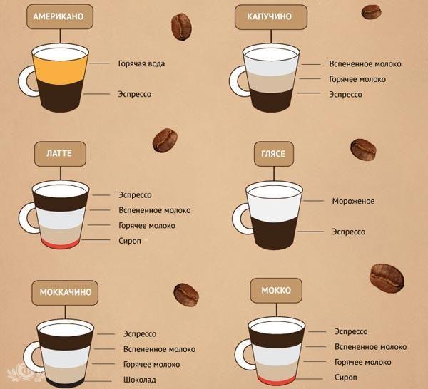 Эспрессо и его виды  Эспрессо — подаётся в чашке 60 мл. Через 1 ст. ложку (7 граммов) кофе тонкого помола пропускают под давлением 30 мл воды температурой 90 градусов. Двойной эспрессо — подаётся в чашке 90–100 мл. Через 2 ст. ложки кофе (14 граммов) тонкого помола пропускают под давлением 60 мл воды температурой 90 градусов.  Эспрессо-лунго — подаётся в чашке 90–100 мл. Через 1 ст. ложку кофе (7 граммов) тонкого помола пропускают под давлением 60 мл воды температурой 90 градусов…