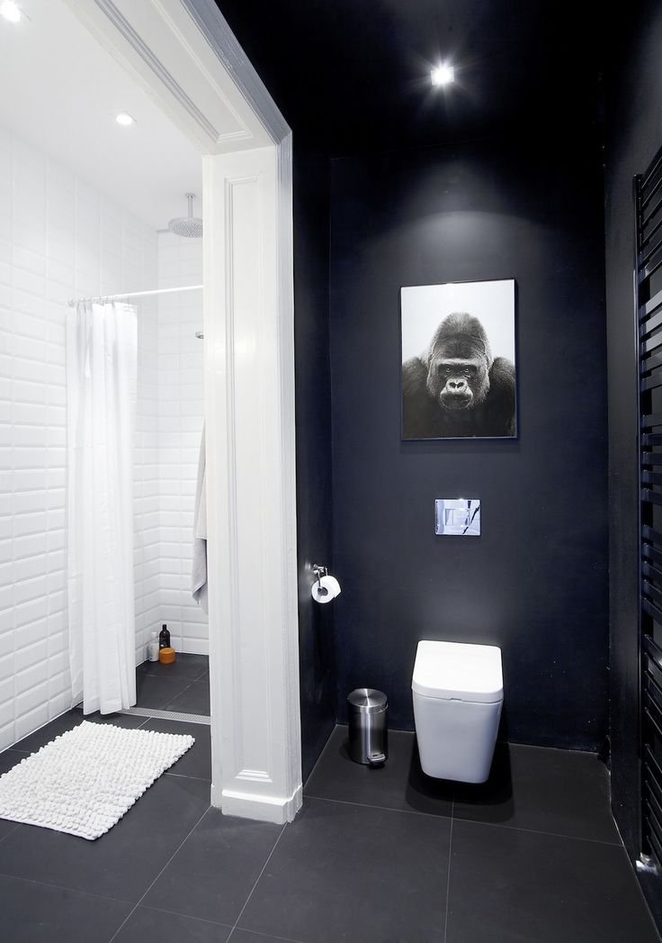 Small Black and White Painted Poznan Apartment Matser Bath Displaying Sanitary and Shower Covered by Curtain,