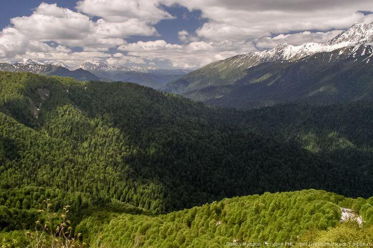 Колхидские ворота - характерное понижение водораздела Главного Кавказского хребта.