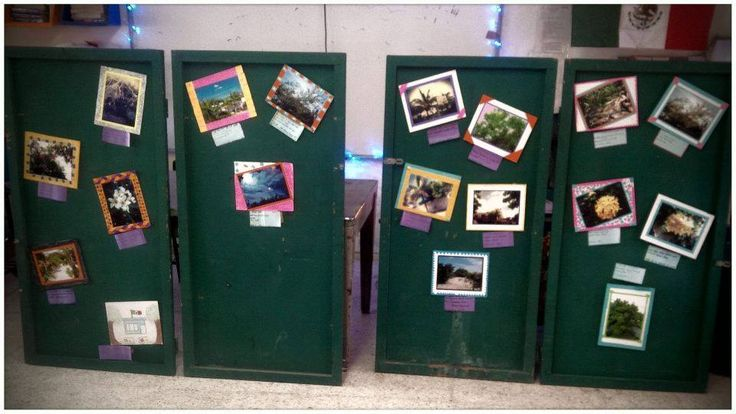 Presentación de fotografías apreciando detalles de su contexto escolar