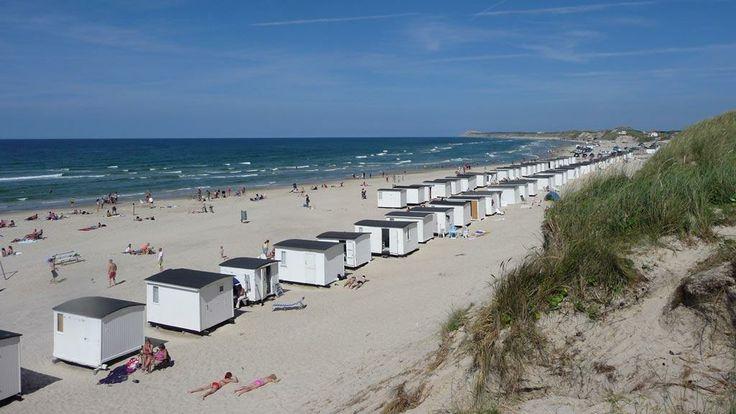 Lokken Google Sogning Danmark Sommerferie Loke