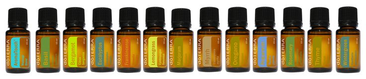 This is the dōTERRA blog where they post tips, recipes, and ideas for everyday use of essential oils. I am addicted!