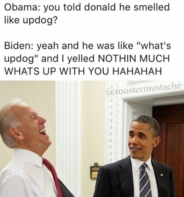 Joe Biden Obama Meme Updog