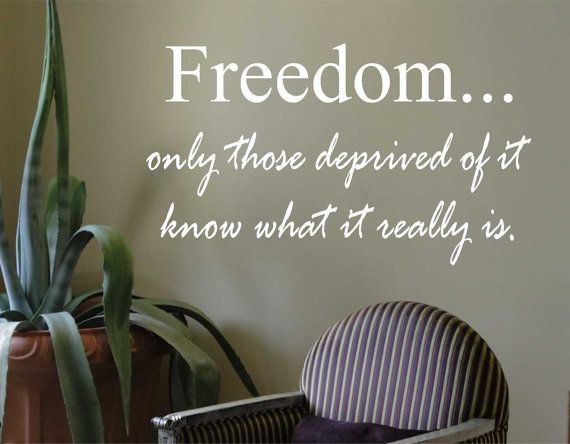 Vinyl Wall Lettering Freedom only those deprived by WallsThatTalk, $13.00