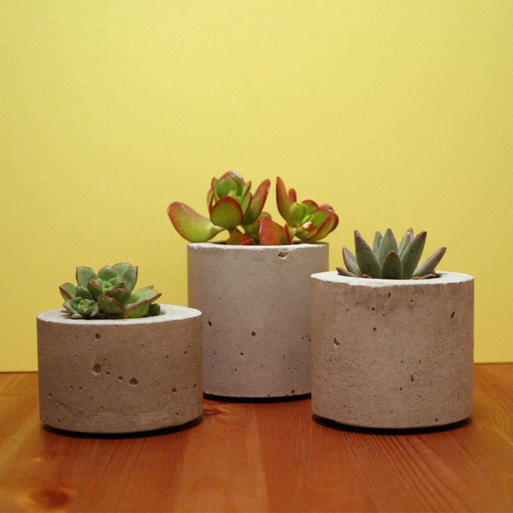 Crescere cast concrete succulent pots trio search i love and succulents - Casting concrete planters ...