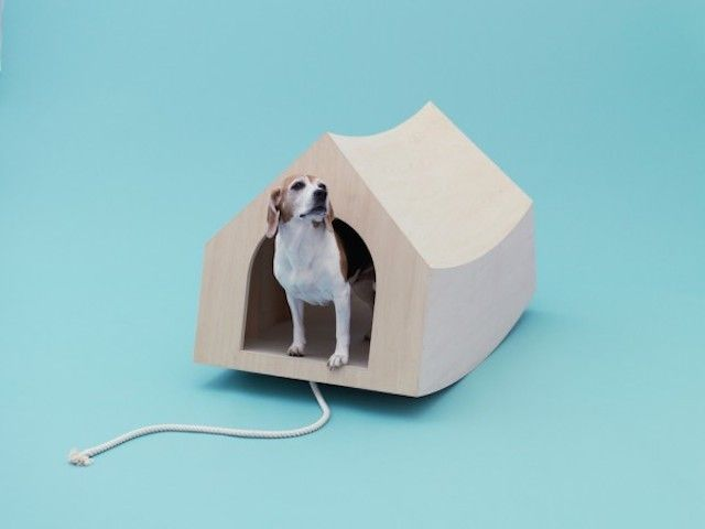 Playful Puppy Shelters