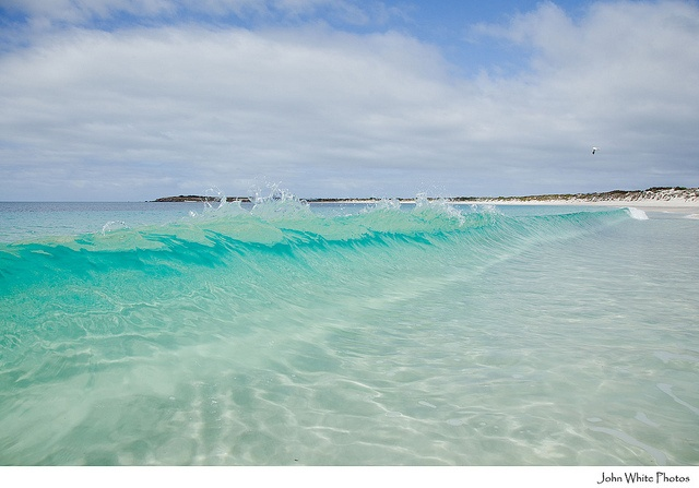Beautiful crystal clear water at 10 mile beach coffin bay, South Australia by john white photos, via Flickr