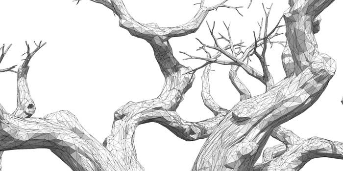 Faceted Baobab Tree, 3D illustration : by Disko Ferdi Dick