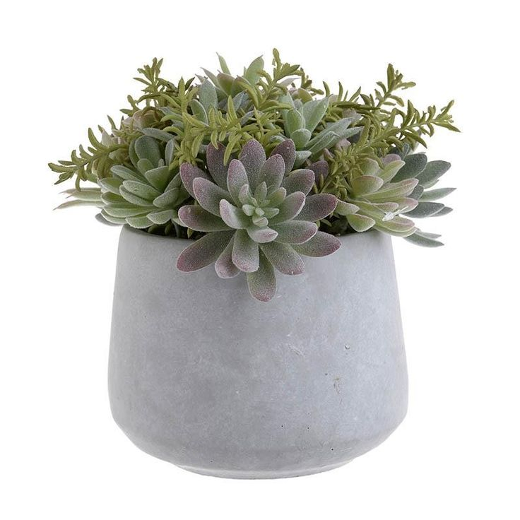 Plant In A Pot - inart