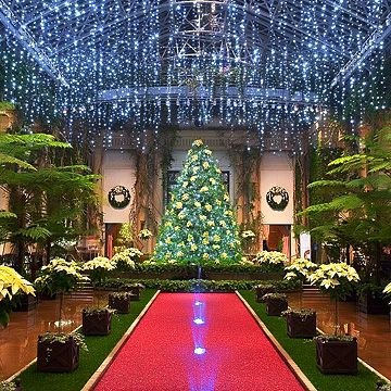 84 best Longwood Gardens At Christmas images on Pinterest ...