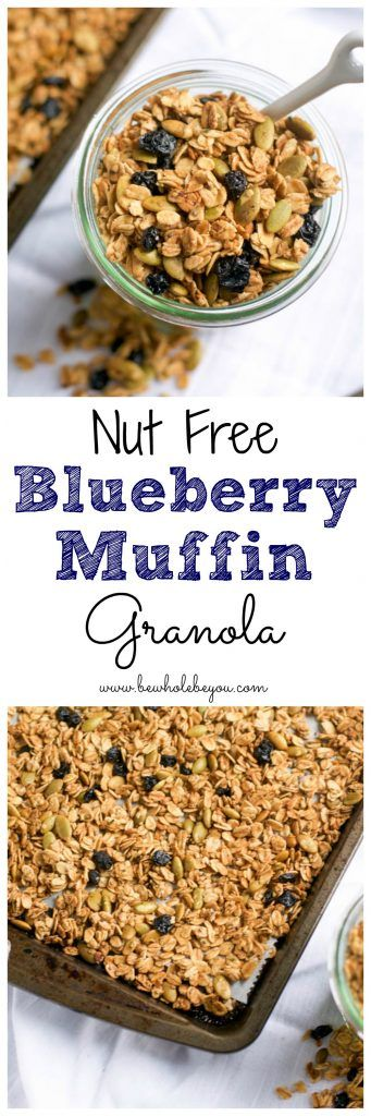 Nut Free Blueberry Muffin Granola. Be Whole. Be You.