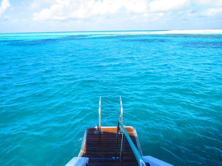 Snorkeling at the Great Barrier Reef with Passion of Paradise. One of the most amazing places on Earth