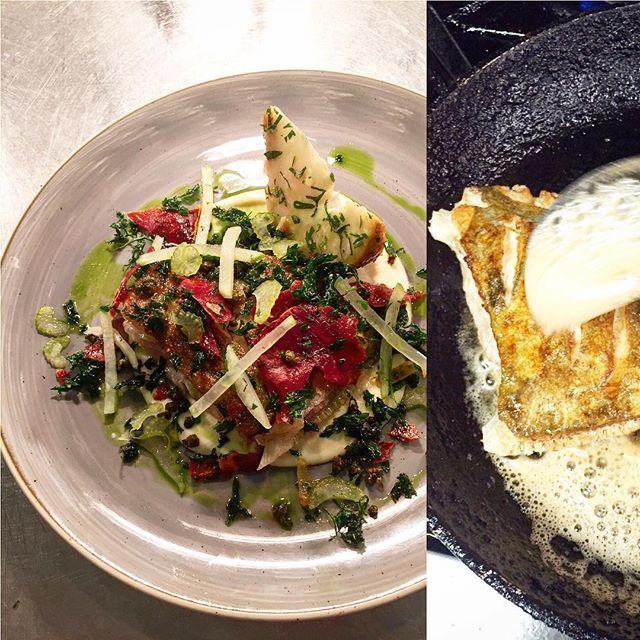 Pan roast John Dory celeriac.... Baked purée & oil pickled celery & apple crispy capers parsley & Cumbrian air dried ham! #special #lastnight #love #celeriac #passionforflavour #thestaffcanteen #TheArtOfPlating #thethreeoaks #chefshavingfun #chefsofinstagram #chefslife #chefsroll #gastroart #foodporn #natural #2015 by mikeyseferynski