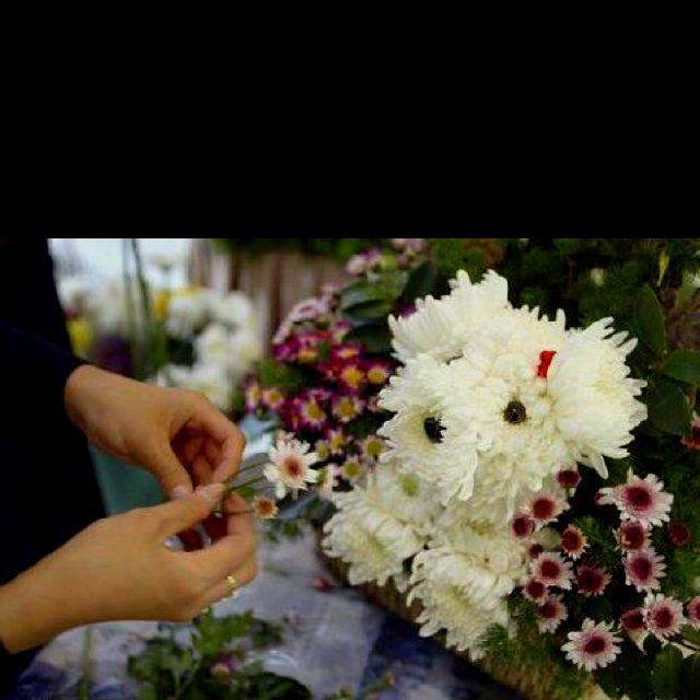 Λουλούδια για τους εορτάζοντες...