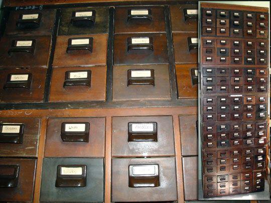 antique wood card catalog