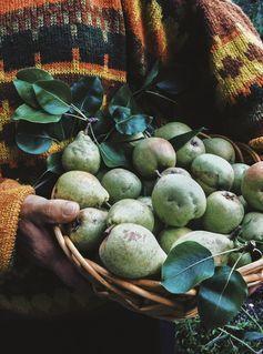 fall inspiration : apples