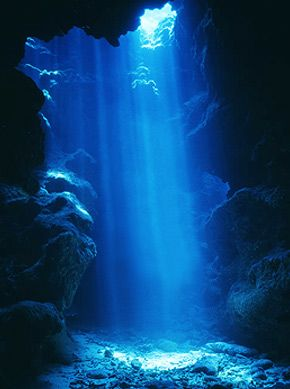 If i knew i woukdnt have a panic attack when i got this far down id love to see this--- Grand Cayman Devils Grotto