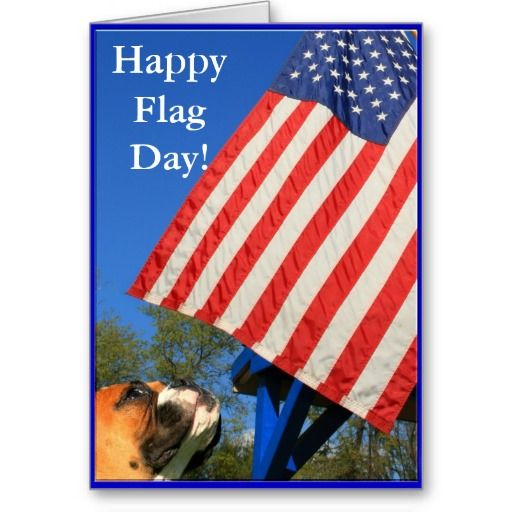 171 best Patriotic Greeting Cards images – Latest Greeting Cards for Birthday