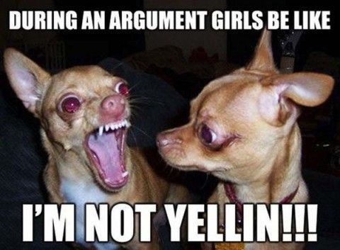 funny pictures with captions 222 (53 pict)   Funny pictures #compartirvideos…