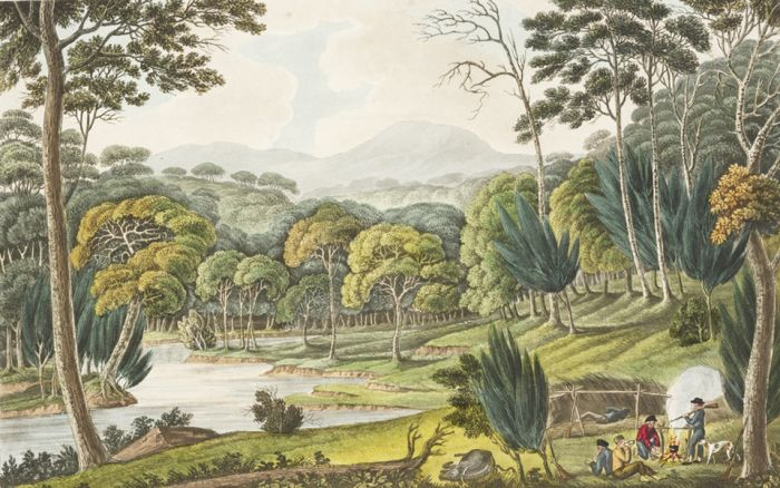 View upon the Nepean River, at the Cow Pastures New South Wales 1824-1825 Joseph Lycett