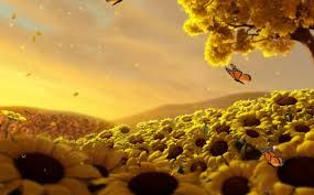 Image result for relaxing moving screensavers