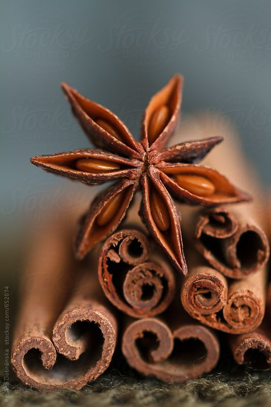 Star Anise and Cinnamon by Renáta Dobránska | Stocksy United