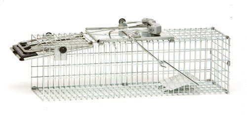 Havahart Easy Set Small 1-Door Animal Trap for Mice, Rats, and Small Squirrels - 1082 by Havahart. $32.98. Animal Safe: No sharp surfaces or edges. Live trap: Ideal for catching chipmunks, rats, squirrels and similar-size nuisance animals. Easy to set: trap sets with one hand and Easy to release: Lever opens trap door and animal is free.. Lever is ideally positioned for releasing animal. Stand behind trap to open trap door and set animal free. Trigger rod is located...
