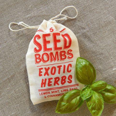 Exotic Herbs Seed Bombs to grow unusual Cinnamon Basil, Lemon Mint and Lime Basil