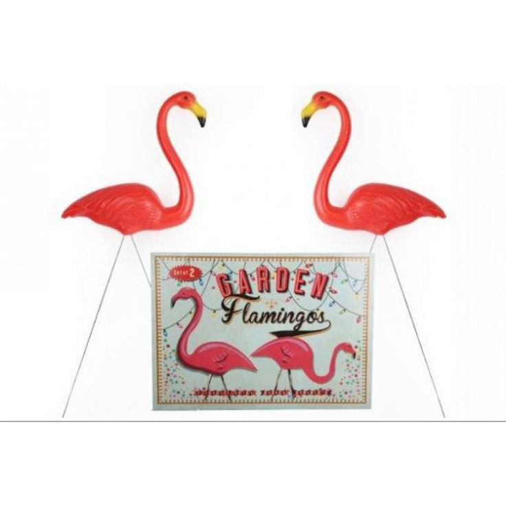 Catootje Tuin Flamingo's