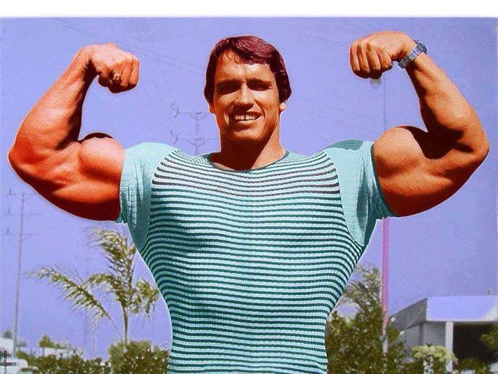 Arnold | Fitness, Motivations | Pinterest | Arnold