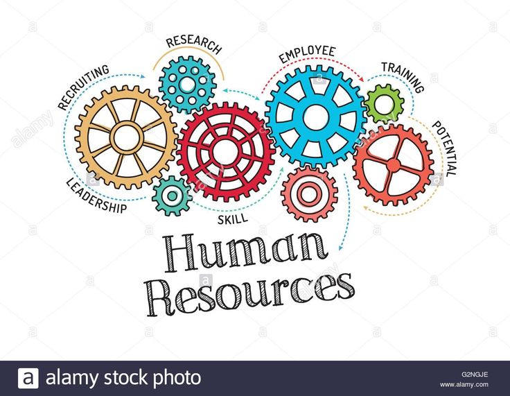 Best Human Resources Images On   Human Resources