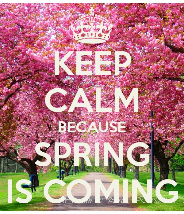 KEEP CALM BECAUSE SPRING IS COMING - KEEP CALM AND CARRY ON Image Generator