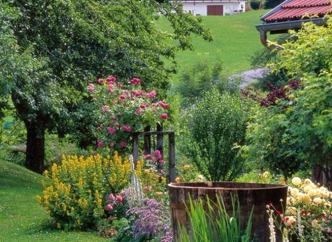 Jardin difficile le jardin de montagne jardins potagers jardins beaux jardins et potager - Jardin de montagne ...