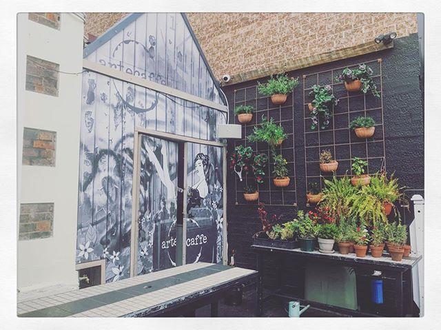 The Village Penrith  @thevillagepenrith #TheVillage #thevillagepenrith #food #eat #breakfast #dine  #avocado #penrith #restaurant #sundays #love #chill #foodphotography ##coffee #cafe #clovarcreative #sydney #garden #verticalgarden #plants #growing #green #urban