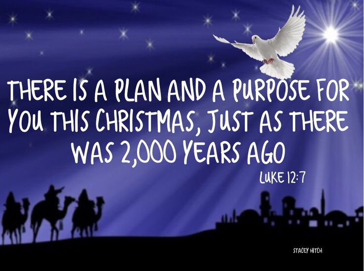 The essence of Christmas is its relevance. It can have a home at every stage of life. It is the voice crying out in wilderness and not a story tale once told. It can be as meaningful in the present as it was 2000 years ago, for Jesus is still shining bright. This year take time and look at twinkle of the lights or the stars shining bright, may it also be a reminder of the One who gives light to all. Christmas is all about the good news of a changed heart