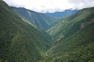 Coroico #bolivia
